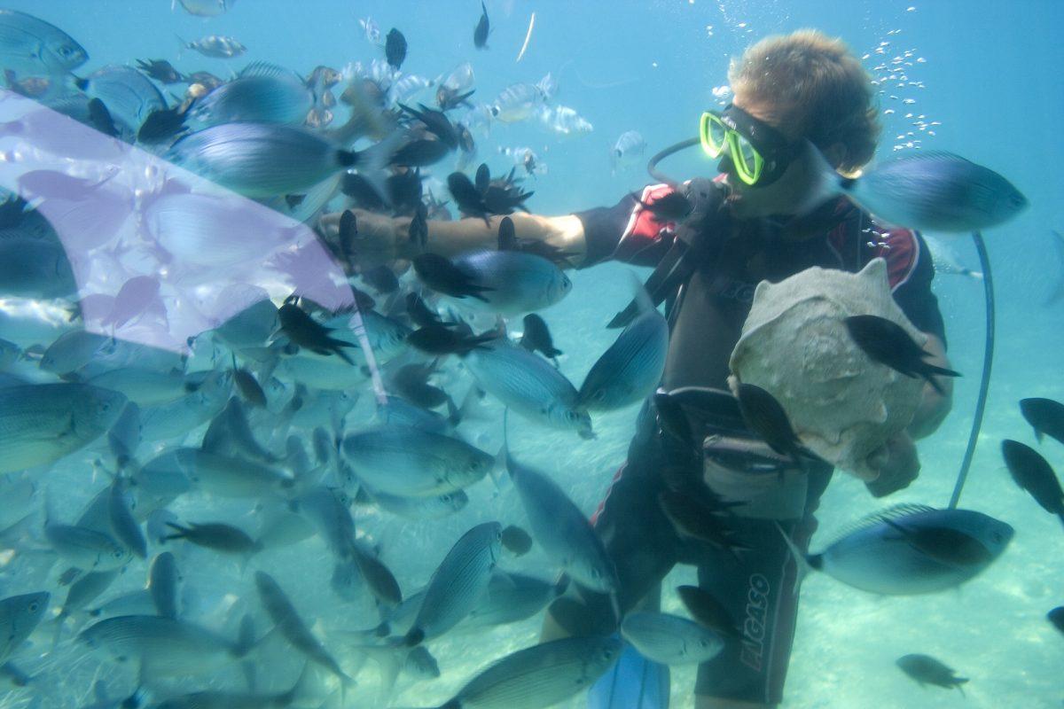 Tauchgang Thailand Andamanen See